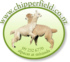 Chipperfield Alpacas Logo. Chipperfield alpacas for coloured suri alpacas