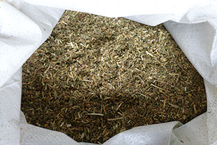 Lucerne Chaff , chipperfield alpacas
